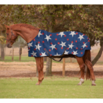 Storm Buster Rain Sheet with Print