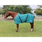 Stable Blanket, Canvas