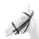 Capriole Weymouth Bridle
