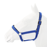 Halter, Exim Padded with Lead