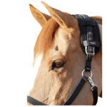 Premier Equine Magni-Teque Magnetic Poll Band