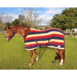 Fleece Blanket with Stripes, Burgundy