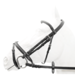 Bridle, Padded