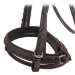 Bridle with Fancy Browband & Stitching