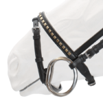 Bridle, Clinched Noseband & Browband