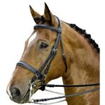 DT Weymouth Leather Bridle